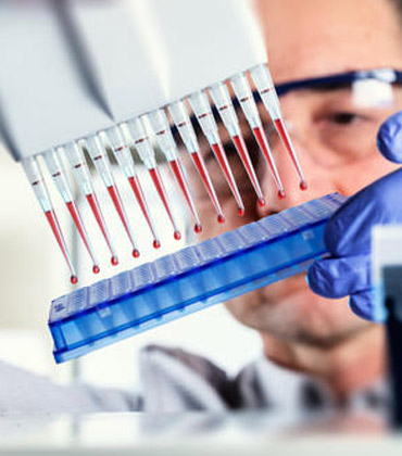 Bioanalytical Testing Services and its Market