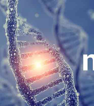 NeuBase Therapeutics Appoints New Chief Business and Strategy Officer