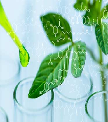 Biotechnology and its impact on today's and tomorrow's world