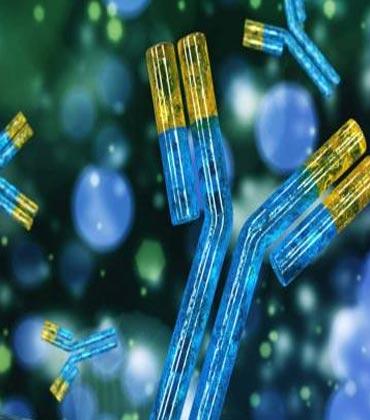 The Future of Biosimilars and Biobetters